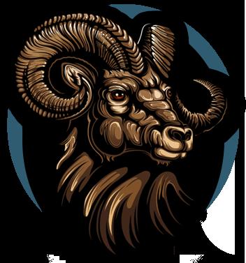 Rocky Mountain Big Horn Distillery  logo