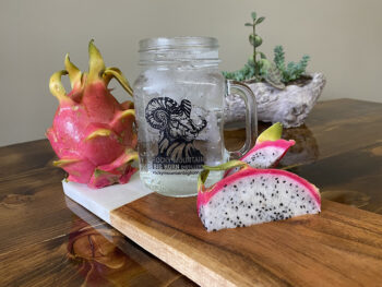 gin and dragon fruit